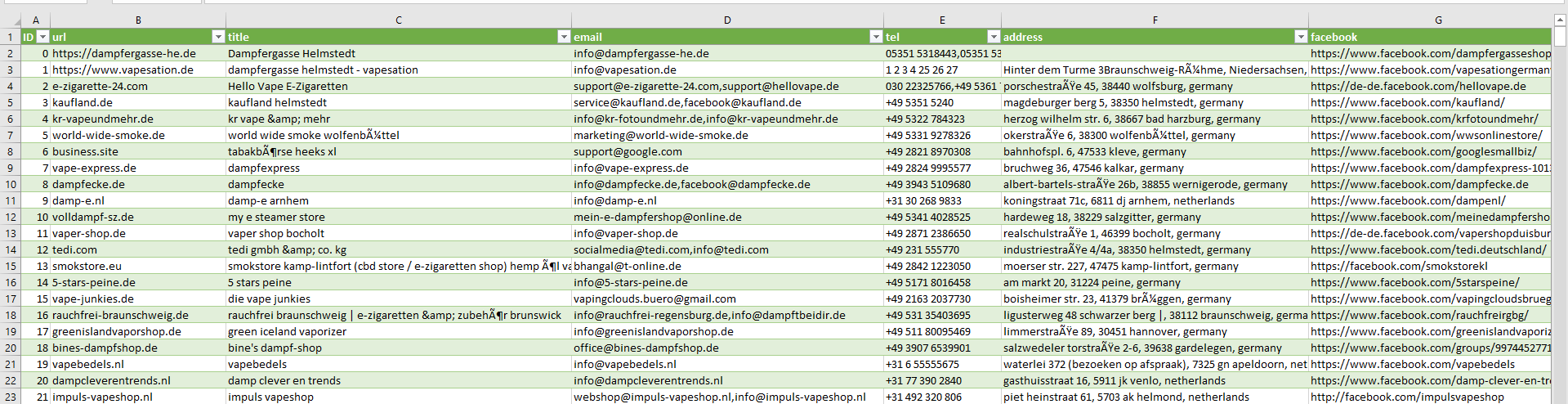 Sample Screenshot of Germany Vape Store Data List