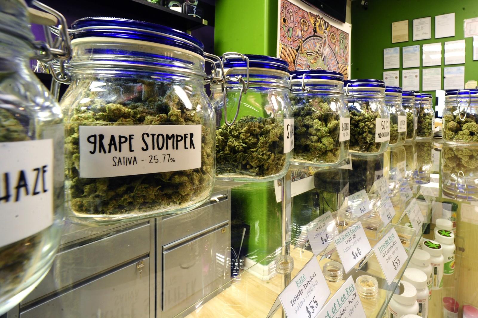 USA Marijuana Dispensaries Email List and How It Can Help Cannabis Companies