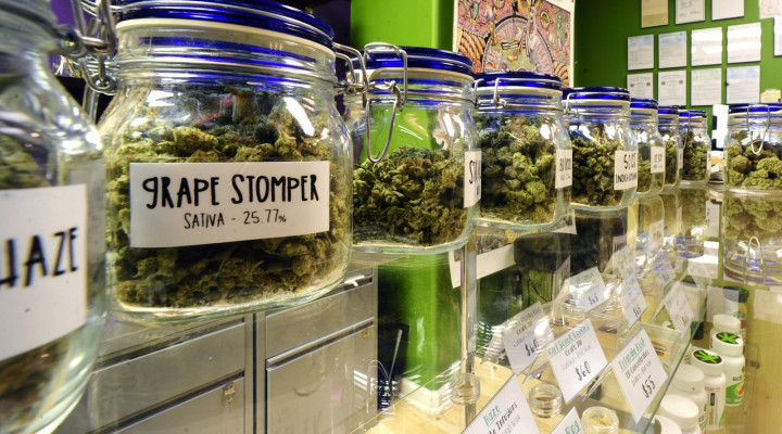 USA Marijuana Dispensaries Email List and How It Can Help Cannabis Companies